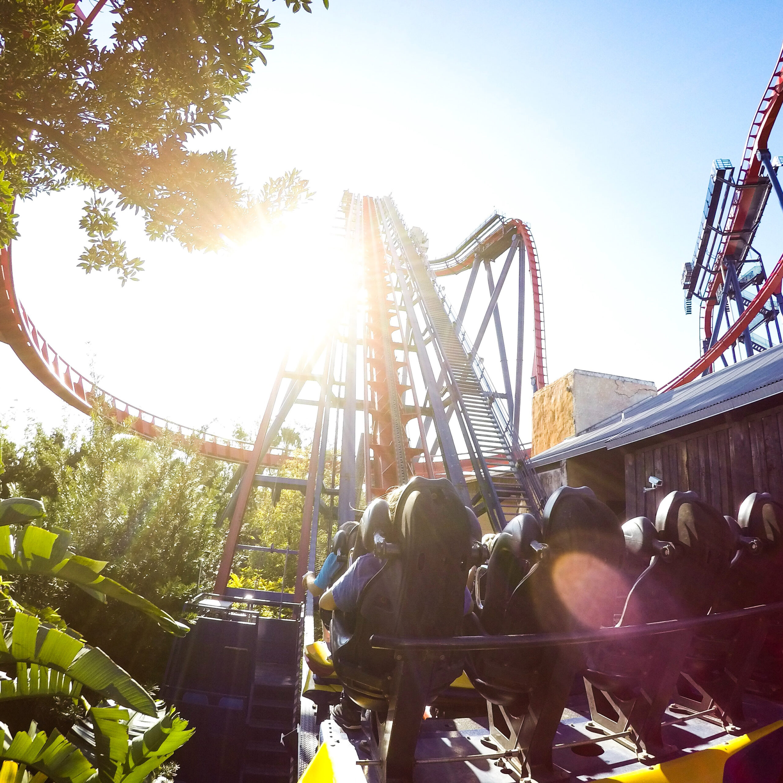 roller coaster at theme park
