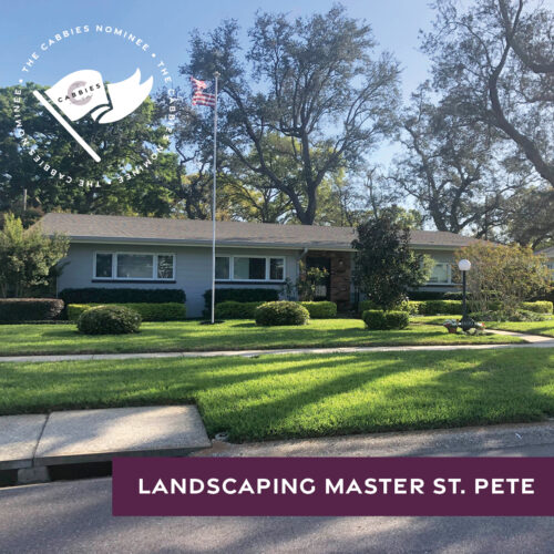 best yard nominee - landscaping master st pete